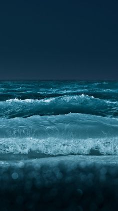 """""""The sea, once it casts its spell, holds one in its net of wonder forever."""" Jacques Yves Cousteau #TaraMedium"""