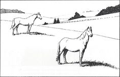 This drawing is a good example of placement. The horses have a relative size, and the trees are much smaller, because they are far away.