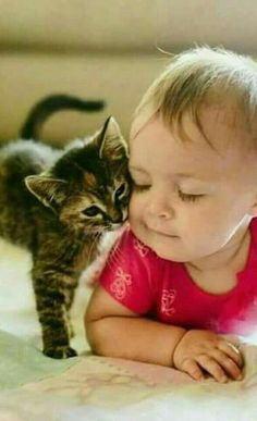 Want more cute kittens? So Cute Baby, Cute Kids, Cute Babies, Animals For Kids, Cute Baby Animals, Animals And Pets, Funny Animals, Funniest Animals, Cute Kittens
