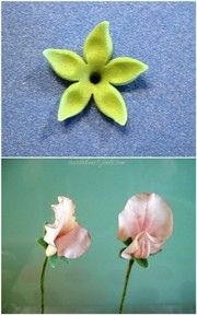 Wicken/Sweet Peas - suessekunst jimdo page!
