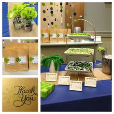 Navy and green bridal shower, candy bar and centerpieces