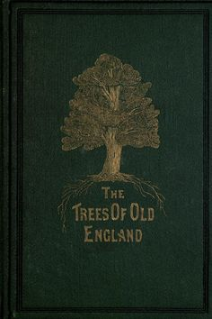 The Trees Of Old England by Leo H. Grindon, 1870 (1) From: A Quieter Storm, please visit