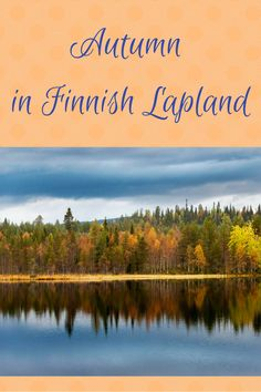 How about autumn in Finnish Lapland? You can enjoy ruska, the colorful autumn foliage, and even go bear watching in Lapland!