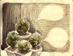 waiting for spring by amanda kavanagh, via Flickr
