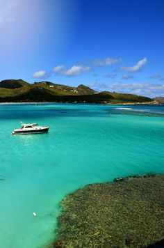 Travel to St. Barts #wimco #caribbean