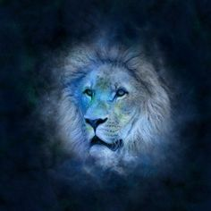 Top Five Personality Traits of a Leo Woman – give me the mic