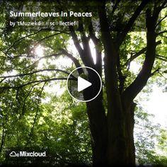 De Muziekd☼☼s: Summerleaves in Peaces