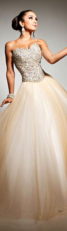 Tony Bowls Love the skirt, wish the neckline was less exaggerated and the crystals weren't multicolored.