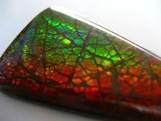 copper ammolite green