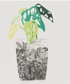 Jonas Wood at David Kordansky Art And Illustration, Illustrations, Botanical Illustration, Jonas Wood, Mexico Art, Contemporary Art Daily, Art Archive, Botanical Drawings, Painting On Wood