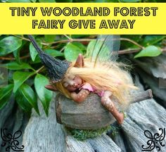 Items similar to Cute & Tiny Woodland Forest Fairy by Celia Anne Harris OOAK - Made to Order on Etsy Woodland Forest, Forest Fairy, Fairy Land, Magical Creatures, Fantasy Creatures, Kobold, Elves And Fairies, Clay Fairies, Fairy Figurines