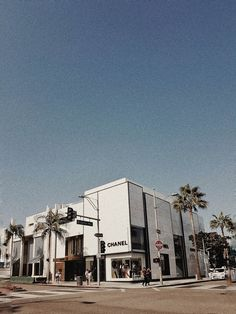 Venice Beach california aesthetic LIVELY Color + Mood