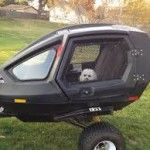 Custom pet motorcycle trailer
