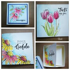 Flower Cards, Different Colors, Birthday Cards, Projects To Try, Stamp, Colours, Petra, Fun, Flowers