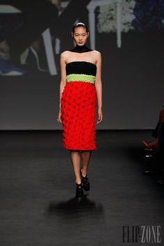 ديور [Dior] - أزياء راقية - خريف-شتاء 2013-2014 - http://www.lebanese-fashion.com/fashion/couture-1/fashion-houses/dior-3977