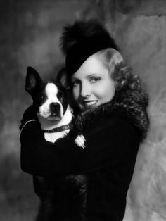 Vintage Boston Terrier with Actress Jean Arthur Print Decoupaged on Wood - Celebrities Boston Terriers, Boston Terrier Love, Terrier Breeds, Terrier Puppies, Dog Breeds, Bulldog Puppies, Bulldog Pics, Havanese Dogs, Jean Arthur