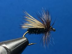 Peacock Caddis / Tied by Jim Hershey