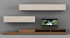 17 Appealing Media Wall Unit Picture Ideas