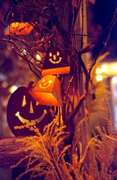Lighted Outdoor Halloween Decor by SteveOhlsen