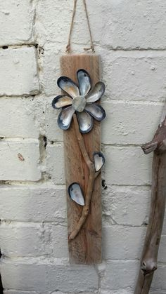 Shell  flowers  by Chloe's Patch