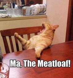 MA! The Meatloaf!!!  OMG - LOL