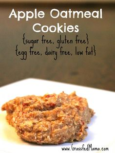 Apple Oatmeal Cookies (THM- E) sugar free, egg free, dairy free, low fat, gluten free