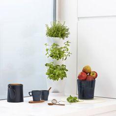 Minigarten Corner | design3000.de