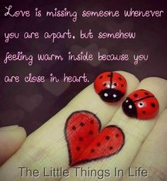 Love quote via The Little Things in Life on Facebook at www.Facebook.com/LittleThingsInOurLife