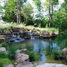 Water Feature Series - traditional - Landscape - Indianapolis - Michael K Akin, Falling Water Creations Natural Swimming Ponds, Natural Pond, Backyard Water Feature, Ponds Backyard, Koi Ponds, Pond Landscaping, Landscaping With Rocks, Southern Landscaping, Pond Design