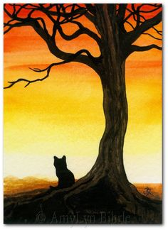 Black Cat Autumn 42 Sunset Tree What a View ArT by AmyLynBihrle