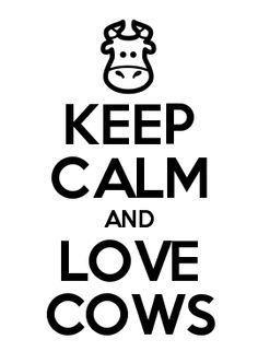 Personalised Keep Calm Gifts to Create and Buy. Cow Quotes, Funny Quotes, Sign Quotes, Cow Kitchen Decor, Cow Gifts, Show Cattle, Cow Shirt, Baby Cows, Country Girl Quotes