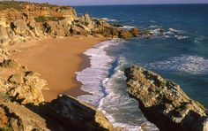 In this post, we will show you all the things to do in Conil de la Frontera (Cadiz) because we want you to enjoy the time you spend in this idyllic place. Cadiz, Great Places, Beautiful Places, Places To Visit, South Of Spain, Tourist Information, Beach Picnic, Places Of Interest, Future Travel