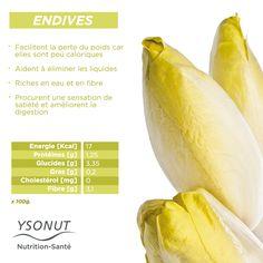 Aujourd'hui, nous allons vous parler des #endives. Un 3légume clé dans votre Régime Protéiné Protéifine. Vous pouvez en consommer sans limite pendant les repas.