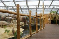 De grillige vorm van kastanje palen, gecombineerd met glas, geeft een speels effect langs het houten looppad en als afscheiding van de diverse dierenverblijven.