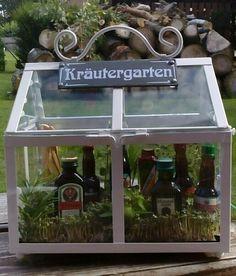 Kräutergarten mal anders