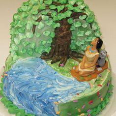 Pocahontas birthday cake!