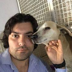 Ambrósio, o cachorro que foi agredidono ES, já tem novo dono. Ele ficará…
