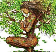 women tree - Google Search
