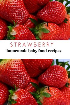 Strawberries are one of the healthiest foods your baby can eat. Here are some simple strawberry baby food recipes you can make in under 5 minutes. Strawberry Baby, Strawberry Recipes, Baby Recipes, Healthy Recipes, Baby First Foods, Introducing Solids, Mom Advice, Everything Baby, Meals For One