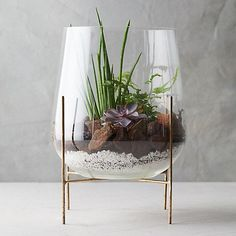 Bathroom Plants, Beach House Decor, Home Decor, Chic Bathrooms, Restaurant, Messing, Flower Decorations, Planting Flowers, Glass Vase