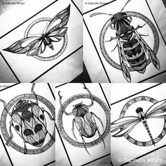 Series of insect art prints #moleskine #moleskineart #insect #insects…