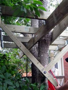 This particular design requires two or three trees (or branches) in close proximity. It was made over the course of several weekends using new, pressure-treated wood...