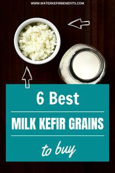 Milk Kefir Grains: 6 Best Milk Kefir Grains to Buy - Water Kefir Benefits Where To Buy Kefir, Kefir How To Make, Korn, Healthy Eating Recipes, Healthy Drinks, Kefir Benefits, Health Benefits, Smoothie, Kefir Recipes