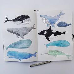 Just had to draw more whales today! 🐳