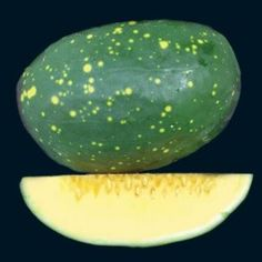 how to grrw watermelon frm see