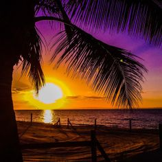 11 Best Moreton Island images in 2015 | Queensland australia