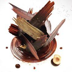Chocolate and hazelnut by Fancy Desserts, Gourmet Desserts, Plated Desserts, Dessert Recipes, Decoration Patisserie, Food Decoration, Food Plating Techniques, Dessert Restaurants, Beautiful Desserts