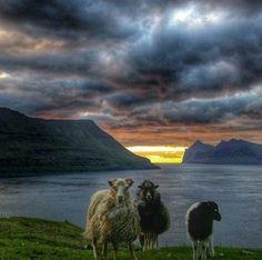 Green Mountain, Faroe Islands, House Colors, Adventure Time, Denmark, Scotland, Bucket, Mountains, Country