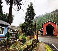 Located in the heart of the Willamette National Forest at the base of the Alpine Trail with a view of the North Fork of the Willamette River. Oregon Hiking, Willamette Valley, Crater Lake, Covered Bridges, Best Location, National Forest, Mountain Biking, Trail, Waterfall