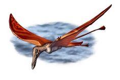 Draw Dinovember 2016 Day 13 Rhamphorhynchus by daitengu